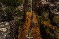 Jaboticatubas - State of Minas Gerais, Brazil - panoramio (82).jpg