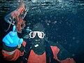 Jellyfish méduse diver mcmurdo.jpg
