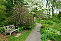 Jenkins Arboretum - DSC00689.JPG