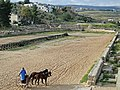 Jerash - Hippodrome 03.jpg