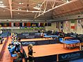 Jersey at European Youth Championships 2014.jpg