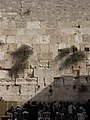 Jerusalem 2009 (4158942870).jpg