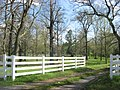 Jesse Whitesell Farm gate.jpg