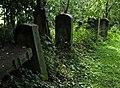Jewish cemetery Szydlowiec 26417120.jpg