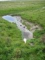 Künstliche Insel im Speicherkoog Dithmarschen IMG 5938.JPG