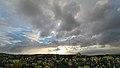 Kaimu Beach Park, Pahoa (504166) (22917317782).jpg