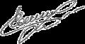 Kateryna Serebrianska Signature 2014.png