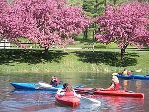 Berkshire Country Day School - Kayaking on Barrett Pond