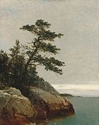 Kensett John F The Old Pine Darien Connecticut.jpg