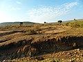 Kenya 2013 The way Keekorok-Narok - panoramio (1).jpg