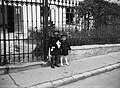 Kids 1940, Street name sign Fortepan 55444.jpg