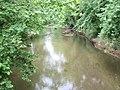 Killbuck Creek east of Killbuck.jpg