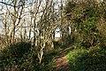 Kingston, coast path near Malthouse Point - geograph.org.uk - 605626.jpg