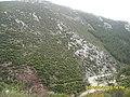 Kisha e Laçit - panoramio (3).jpg
