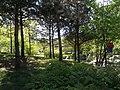 Koreanischer Garten (12).jpg