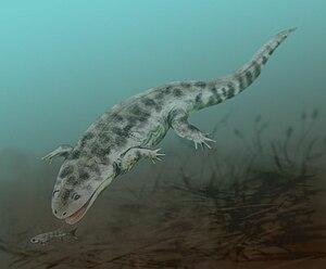 Metoposauroidea - Life restoration of Koskinonodon perfecta