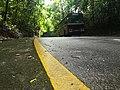 Kottawagama Rain Forest View.jpg