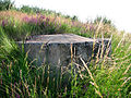 Kurgan near Novi Knezevac, Serbia (the bunker).JPG