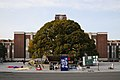 Kyoto University - 2009' faculty members strikes.jpg