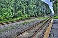 LIncoln MA HDR Train Tracks.jpg