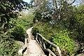 Lac Inférieur @ Bois de Boulogne @ Paris (32848188553).jpg