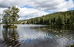 Lakeside view in Dalarna-10.jpg