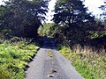 Lane heading south from Embleton Old Hall - geograph.org.uk - 1521672.jpg