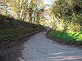 Lane to Dymock - geograph.org.uk - 1065970.jpg