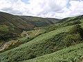 Langden Valley - geograph.org.uk - 1416490.jpg