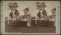 Lawn and dock, 14-mile Island, by Conkey, G. W. (George W.), 1837-ca. 1900.png