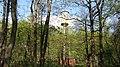 Leninsky District, Moscow Oblast, Russia - panoramio (164).jpg