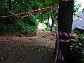 Lesopark Belveder, I. etapa rekonstrukce, cesta.jpg