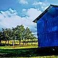 Lets live here, kashmir.jpg
