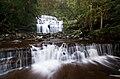 Liffey Falls, Liffey, Tasmania.jpg
