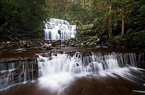 Liffey River (Tasmania) - Liffey Falls in the upper river