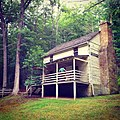 Lighthorse Harry Lee Cabin Mathias WV 2014 06 21 02.jpg