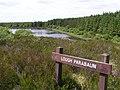 Lough Parabaun - geograph.org.uk - 835750.jpg