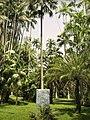 Lucio Salvatore, Jardim Botanico (2008) 3.jpg