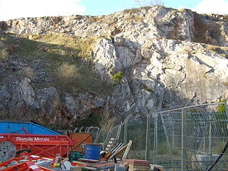 Devonian - The rocks of Lummaton Quarry in Torquay in Devon played an early role in defining the Devonian period.