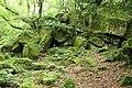 Lustleigh, rocks below Sharpitor - geograph.org.uk - 884376.jpg