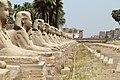 Luxor-Tempel 2016-03-20i.jpg