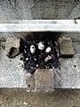 Lyon 8e - Barbecue sauvage sur un banc dans le quartier des États-Unis (mai 2019).jpg