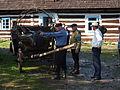 MDDK 2012 - Łosie, Zagroda Maziarska - 26-27 maja 2012 (7300755696).jpg