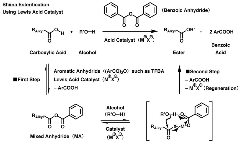 an experiment to understand how esters form from an alcohol and a carboxylic acid Essentially it is synthesized from the reaction between an alcohol + carboxylic acid,  acid with alcohol react to form esters  understand these 2.