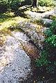 Maël-Pestivien. Chaire des Druides. Détail.jpg