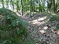Maasmechelen Steenweg naar As zonder nummer Duits oefenterrein, loopgraaf achterste linie bij steenweg - 226440 - onroerenderfgoed.jpg