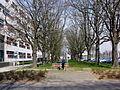 Maastricht, Randwyck, Vroedvrouwenschool.jpg