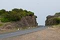 Madeira (2673539509).jpg