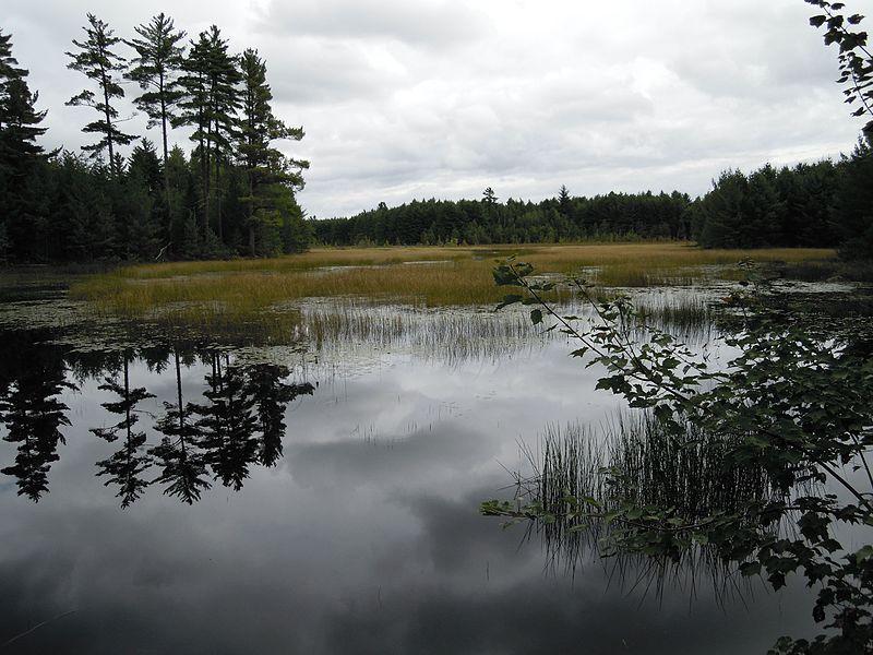 File:Maine Fishery Resorces Office (5425900960).jpg