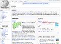Marathiwikipedia.png